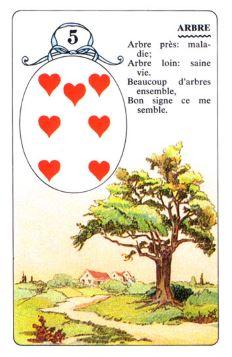 Колода Ленорман - карта дерево