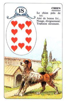 Колода Ленорман - карта собака