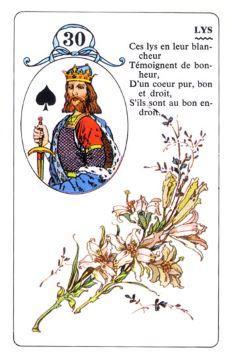 Колода Ленорман - карта лилии